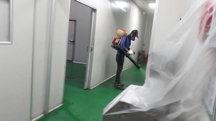 台南專業除蟲公司推薦   首選/